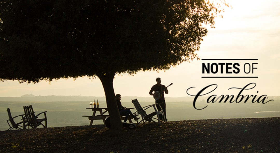 Notes of Cambria - Wine and Musical Pairing