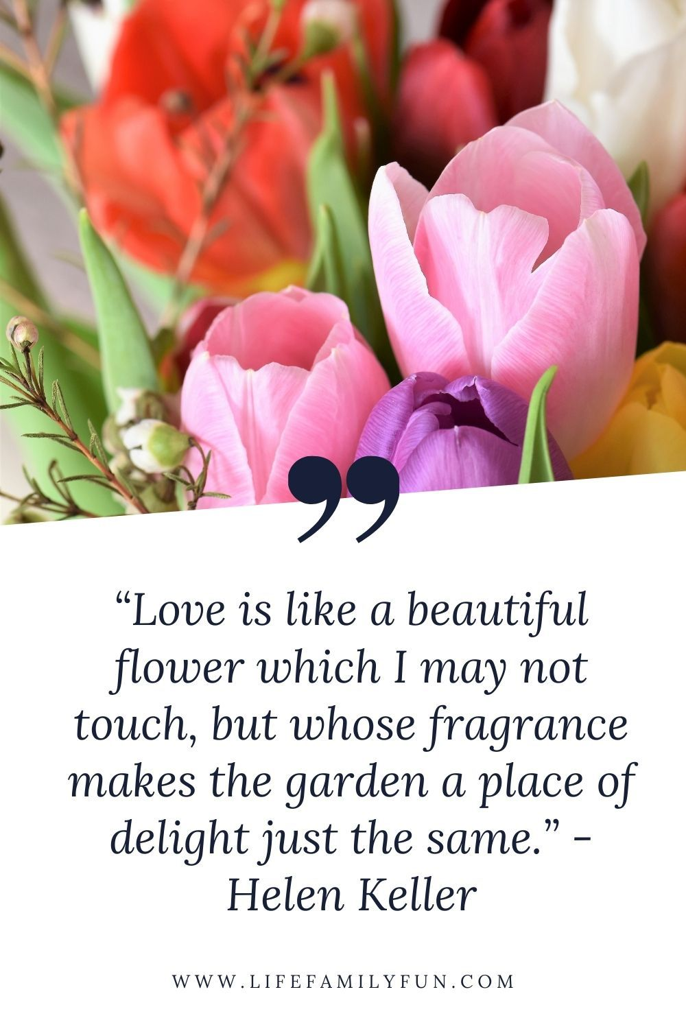 Marriage Quote by Helen Keller
