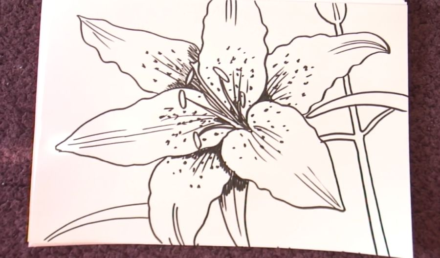 flower drawing easy