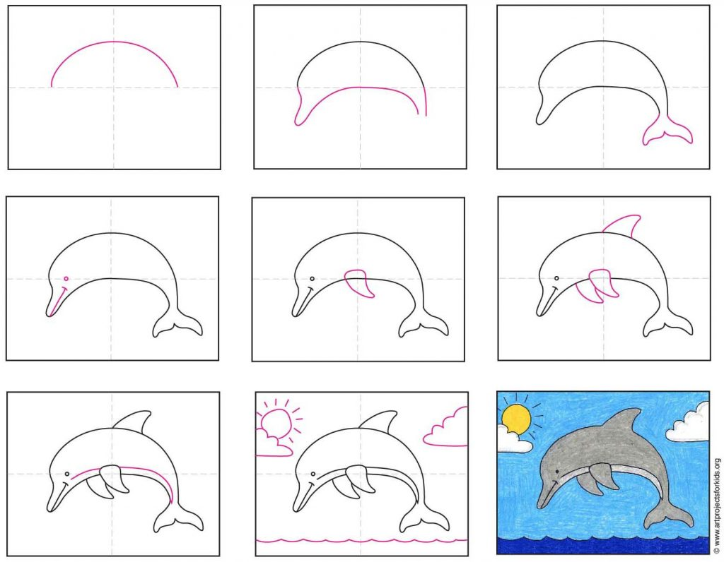 things to draw dolphin