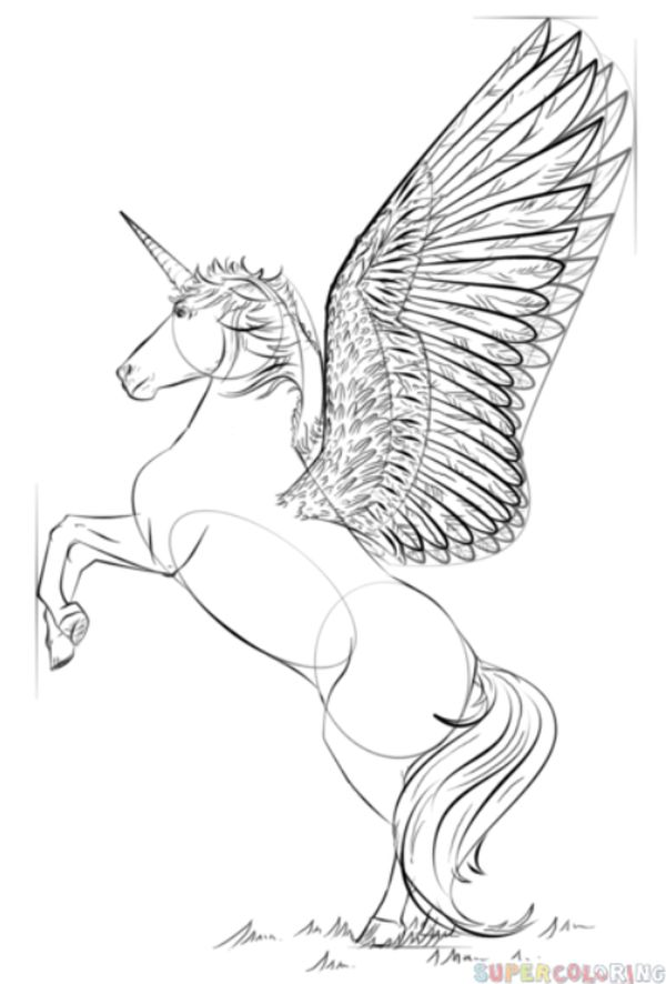 Realistic Unicorn