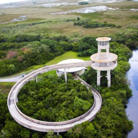 Things to Do in the Everglades